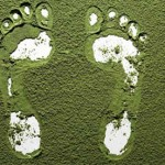 Huella de carbono, todo lo que necesitas saber
