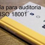 Guía para auditoria en ISO 18001 – OSHAS