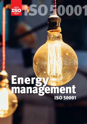 Energy Management of Distributed Generation Systems